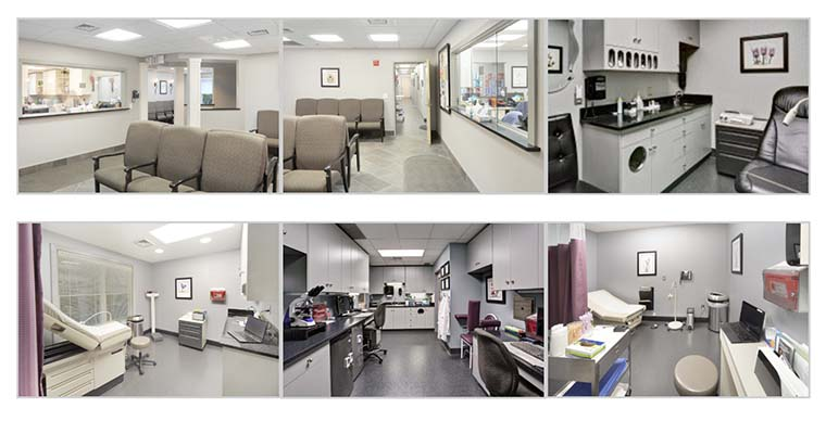 collage of interior office shots